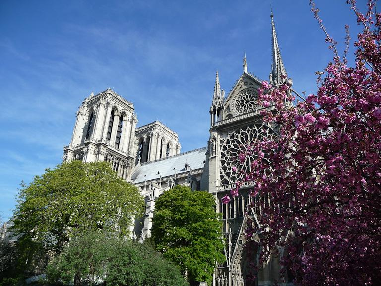 Cathédrale Notre-Dame, Île de la Cité, Paris 4e (75)