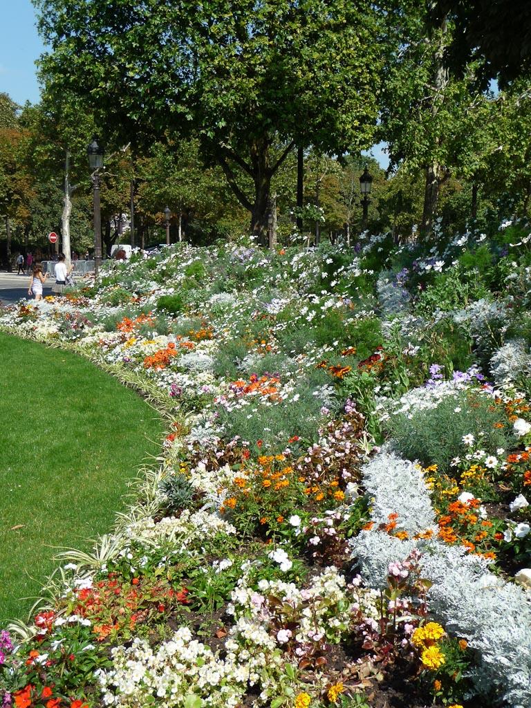 Fleurissement estival, parterre fleuri du Rond-point des Champs-Élysées, Paris 8e (75)