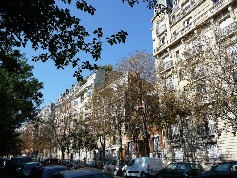 Marronniers défeuillés par la mineuse, rue Manin, Paris 19e (75)