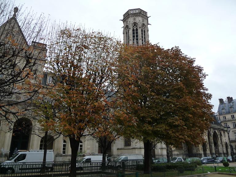 Marronniers en fin d'automne devant l'église Saint-Germain-L'Auxerrois, Paris 1er (75)