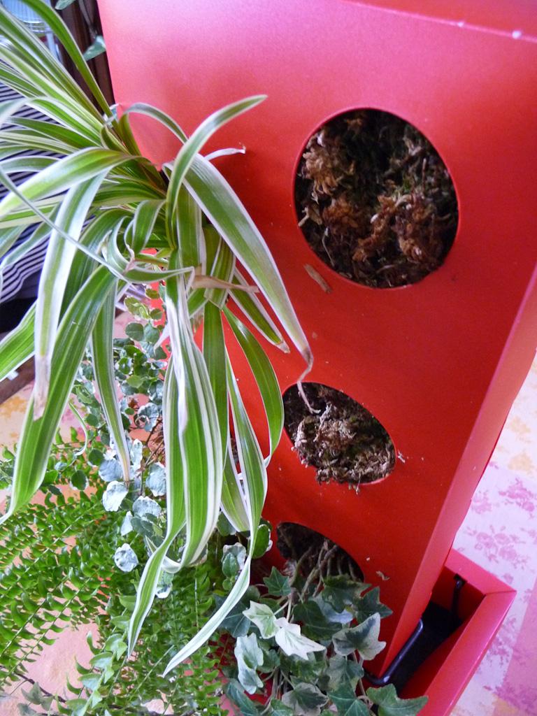 Ma colonne végétale (Canopus) avec deux plantes manquantes