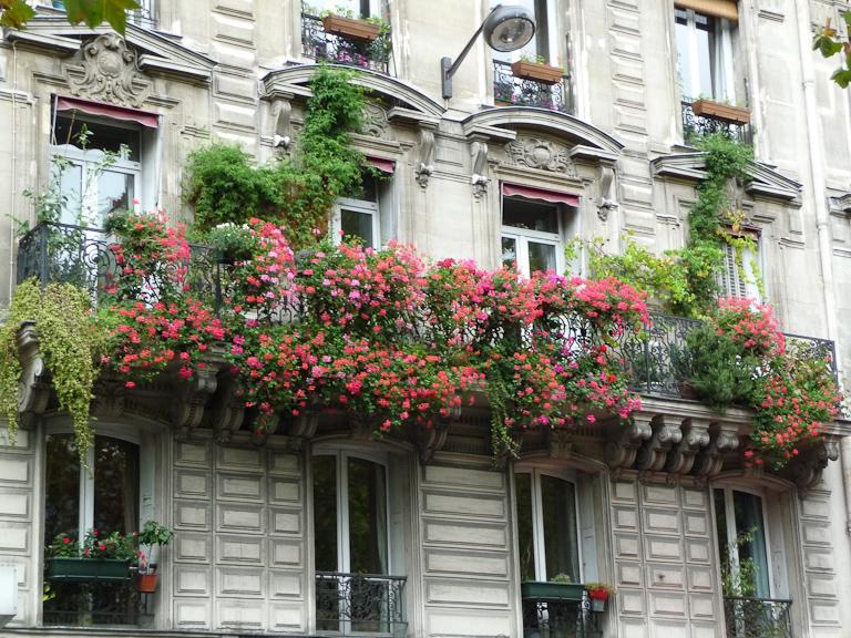 Géraniums lierres sur un balcon fleuri dans le 18e arrondissement de Paris