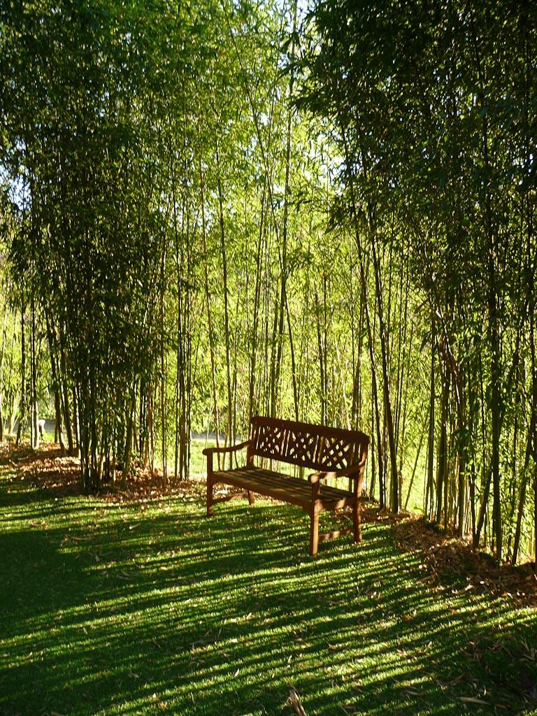 Banc et rideau de bambous, Hôtel A Quinta da Auga (www.aquintadaauga.com), Santiago de Compostela, Galice (Espagne)