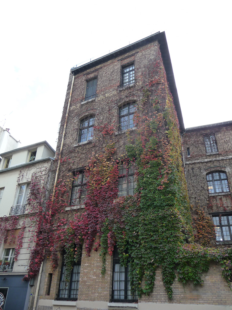 Vigne vierge en automne sur la façade du lycée Lucie Aubrac, rue de la Fontaine-au-roi, Paris 11e (75)
