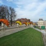 Potées de chrysanthème cascade dans le Jardin du Luxembourg en automne, Paris 6e (75)