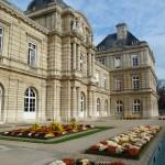 Parterres de chrysanthèmes dans le Jardin du Luxembourg en automne, Paris 6e (75)