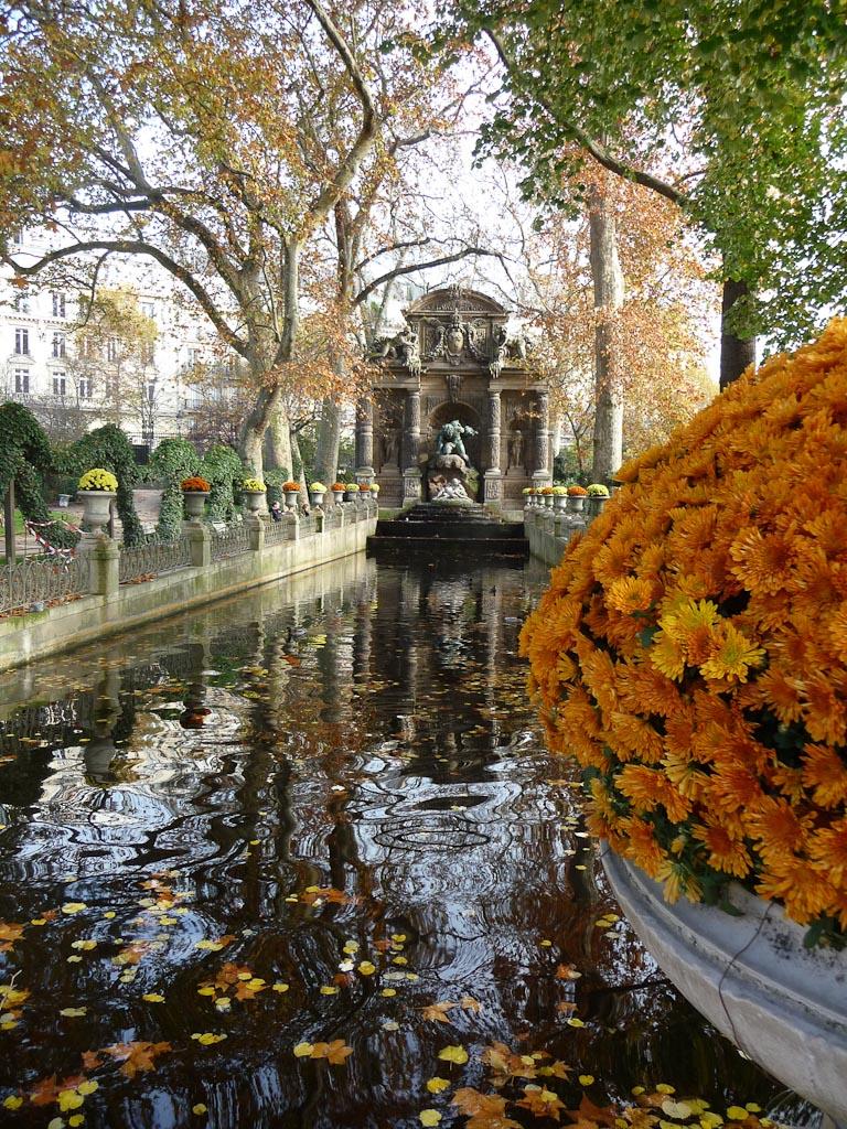 Chrysanthèmes, Fontaine Médicis, Jardin du Luxembourg en automne, Paris 6e (75)