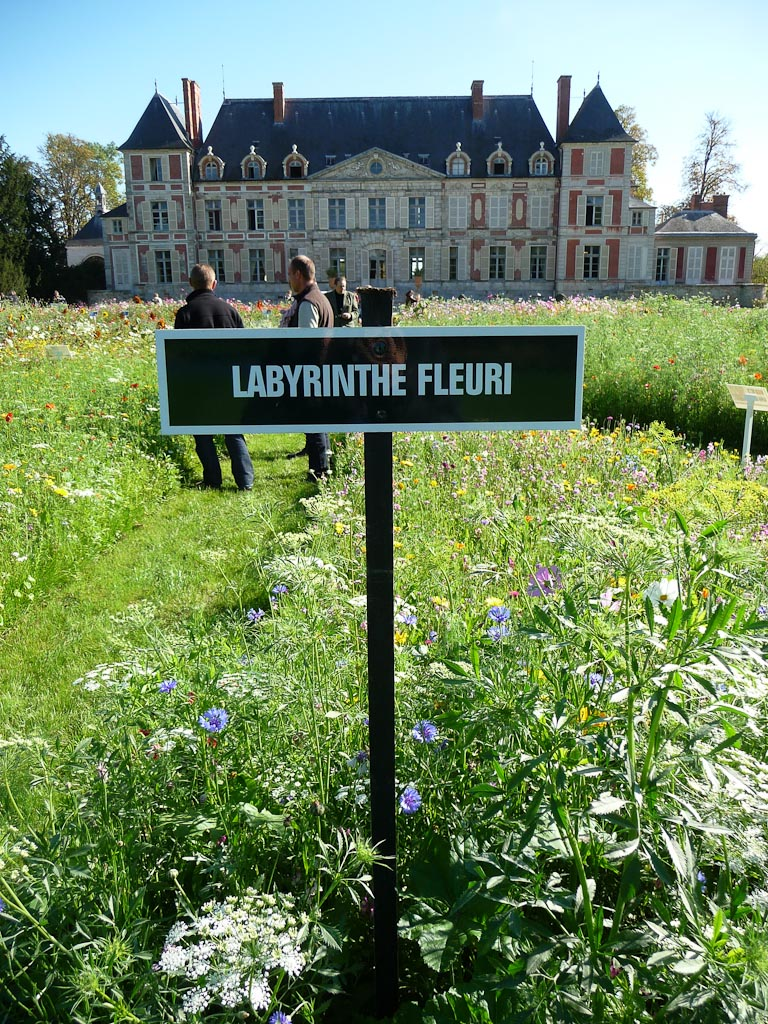 Labyrinthe fleuri de Novaflore, parc du Domaine de Courson, automne 2011, Essonne