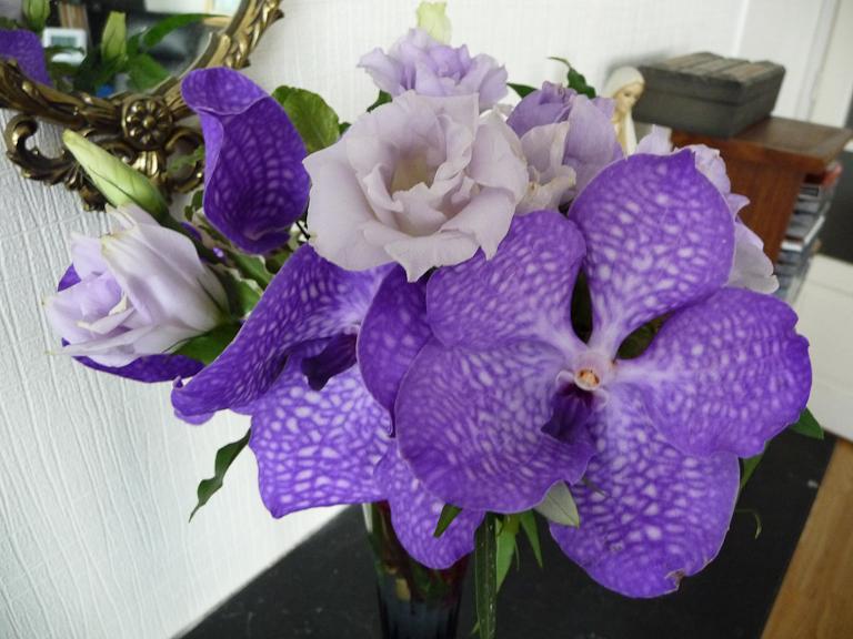 Bouquet de lisianthus et de vanda, Natur'Elle, rue du Ranelagh, Paris 16e (75)