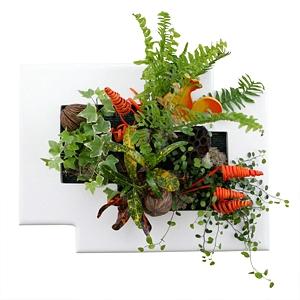 Tableau végétal Louanne blanc, www.tableau-cadre-vegetal.com