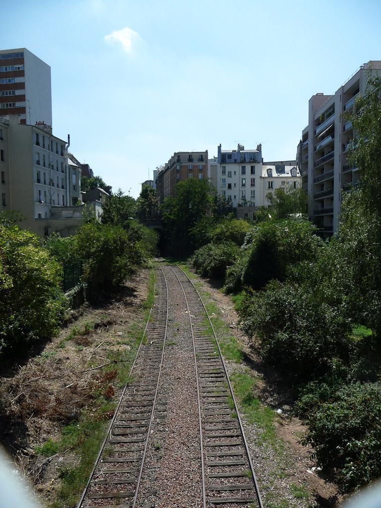 Petite Ceinture près de la rue de la Mare, Paris 20e (75)