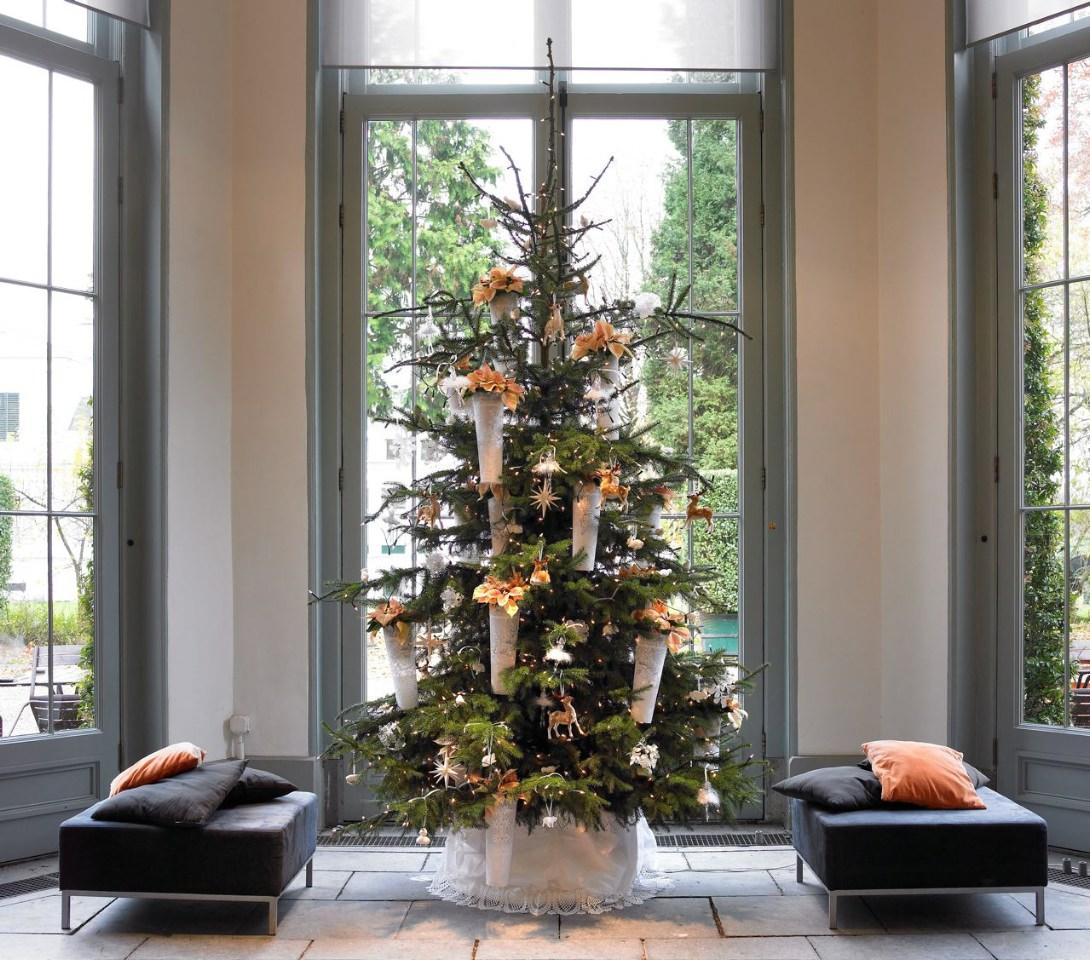 Sapin décoré de poinsettias abricot, photo Stars of Europe