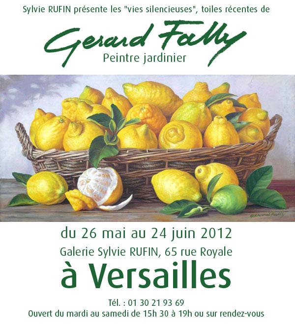 Exposition Gérard Fally, Galerie Sylvie Rufin, Versailles (Yvelines)