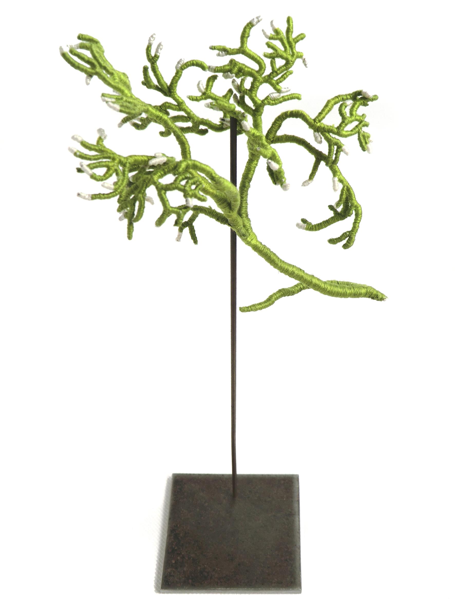« Algue III » 2011 / Catherine Noury Broderie au fil de coton © DR / courtesy galerie SIT DOWN
