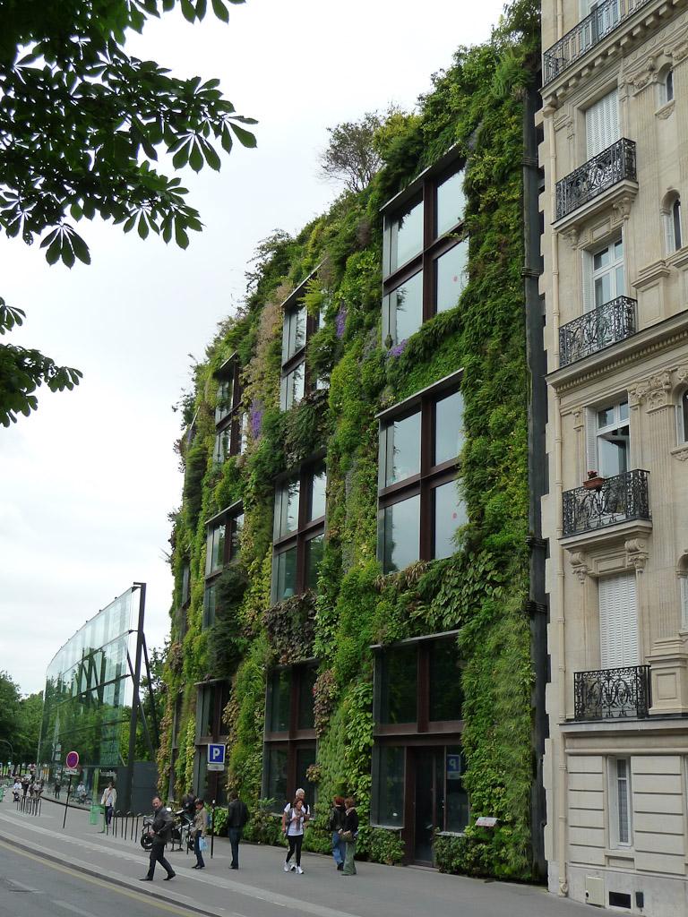 Mur végétal de Patrick Blanc au Musée du Quai Branly, Paris 7e (75)