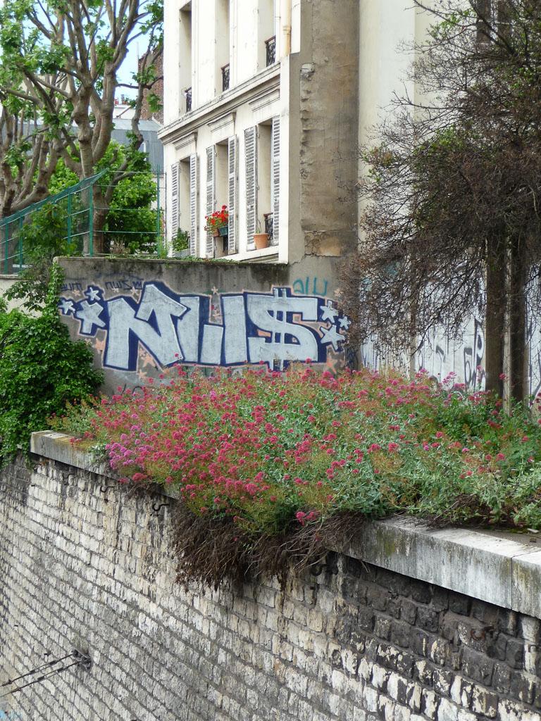 Valériane des jardins (Centranthus ruber) au-dessus des voies de chemin de fer de la Gare St Lazare, Paris 17e (75)