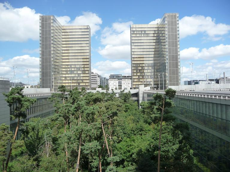 La forêt dans le jardin intérieur de la BNF, Paris 13e (75)