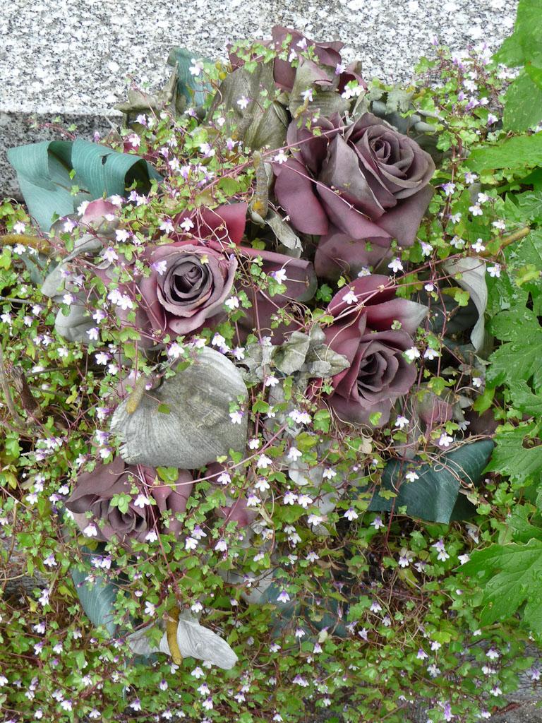 Bouquet de fleurs artificielles envahi de cymbalaires, cimetière du Père Lachaise, Paris 20e (75)