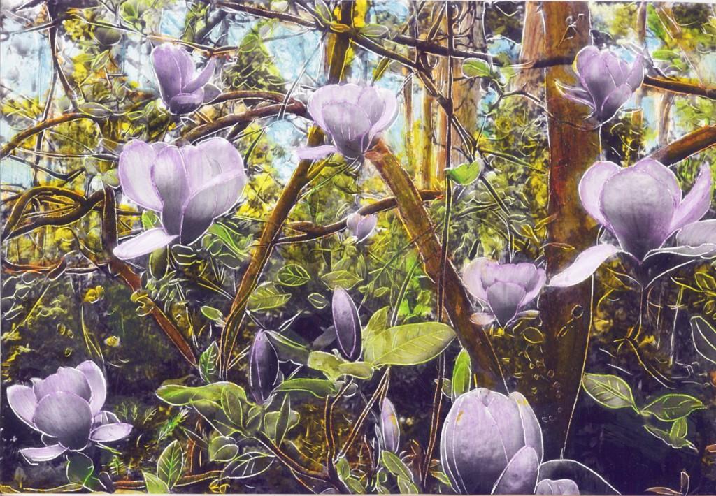 Les magnolias, Parc floral de Paris, Garance Cappatti