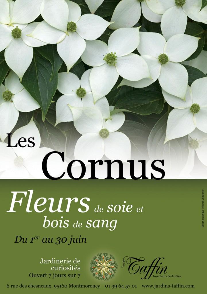 Les Cornus : Fleurs de soie et bois de sang
