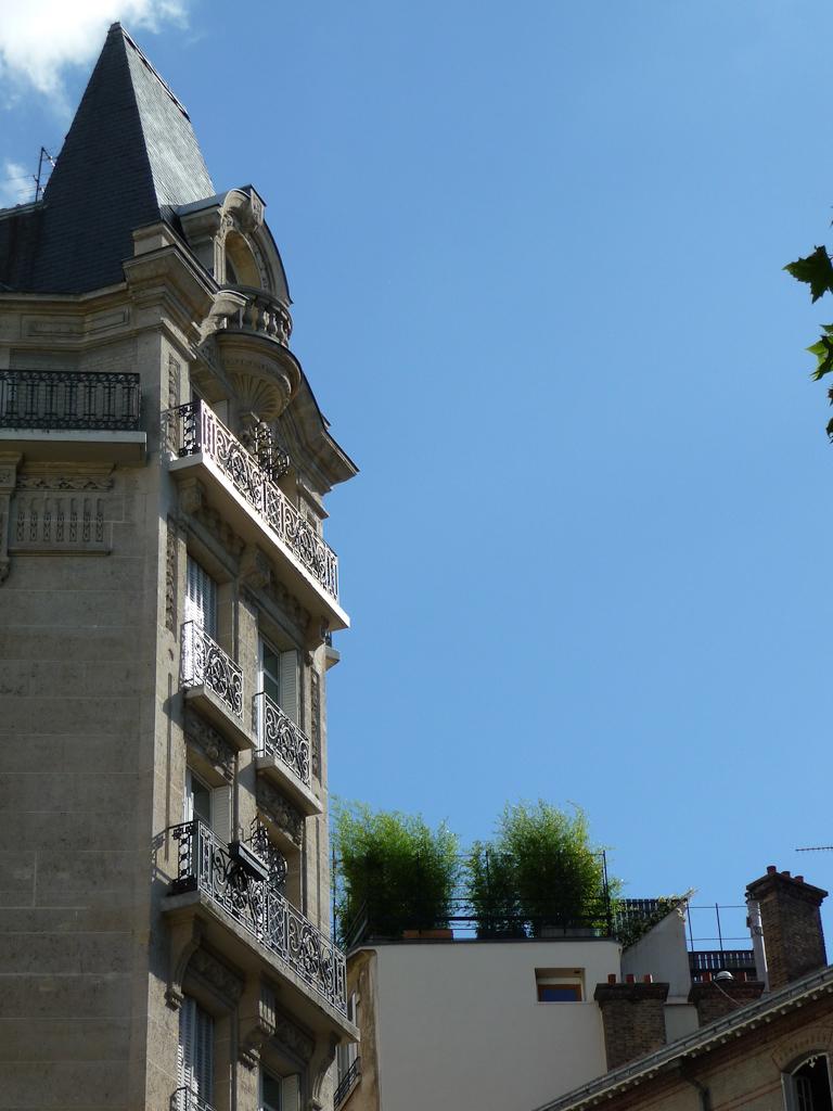 Jardinières de bambous sur une terrasse, Montmartre, Paris 18e (75)