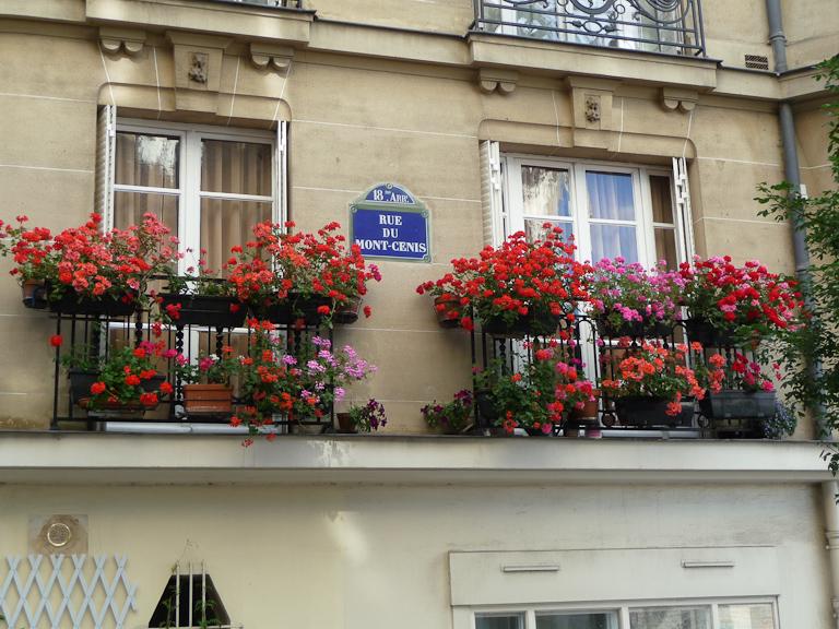 Fenêtres fleuries avec des jardinières de géraniums dans la rue du Mont Cenis, Butte de Montmartre, Paris 18e (75)