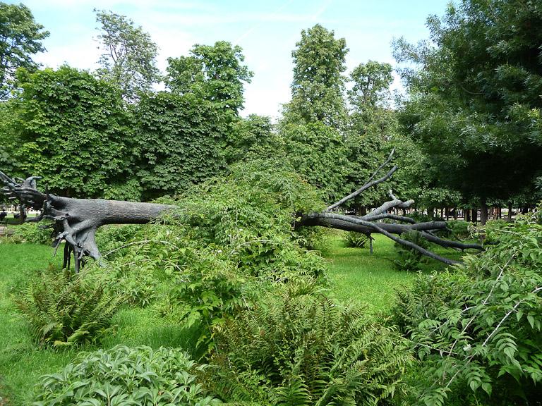 L'Arbre des voyelles de Giuseppe Penone dans le jardin des Tuileries (Paris 1er)