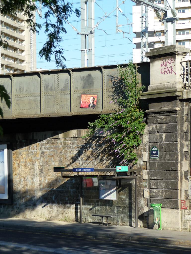Arbre aux papillons (Buddleia davidii) accroché à un pont de chemin de fer au-dessus d'un arrêt de bus dans la rue de l'ɉvangile, Paris 18e (75)