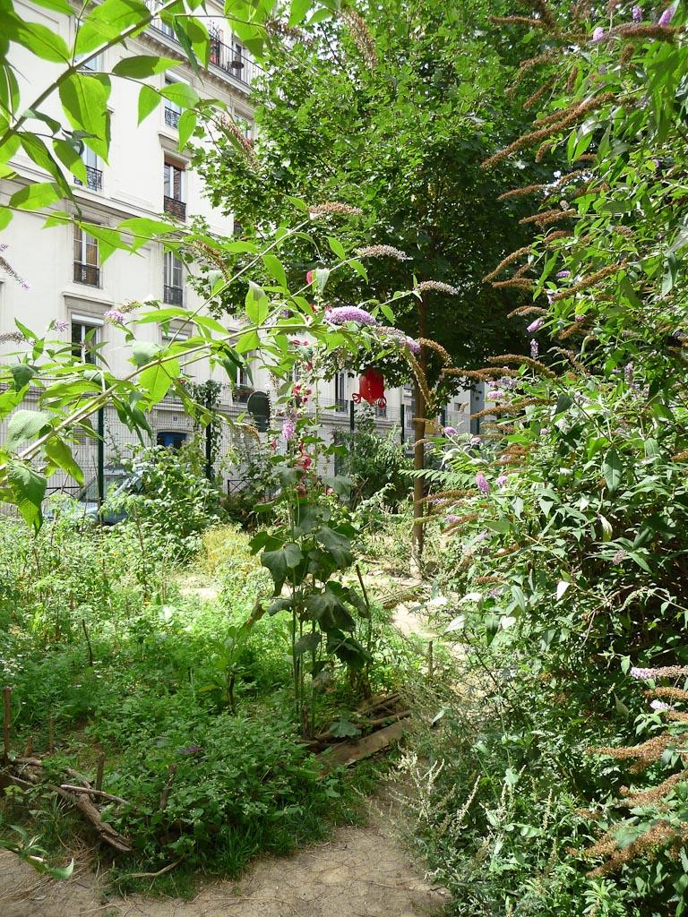 Jardin partagé du Bois Dormoy, cité de la Chapelle, Paris 18e (75)