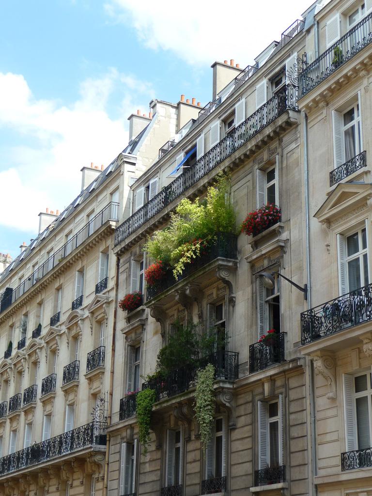 Balcon avec bambous et géraniums lierres, rue de Phalsbourg, Paris 17e (75)