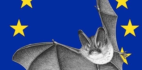Nuit européenne de la chauve-souris 2012