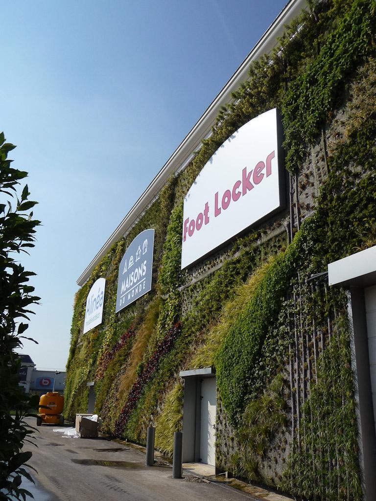 Mur végétal de Patrick Blanc, Inauguration du centre commercial Alpha Park II, Les Clayes-sous-Bois (78)