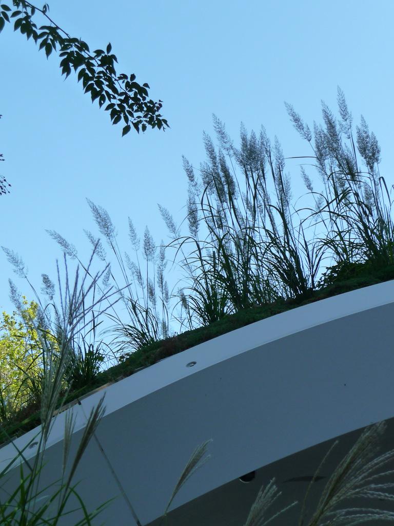 Abri végétalisé conçu par les Ateliers Jean Nouvel, jardin du Musée du quai Branly, Paris 7e (75)