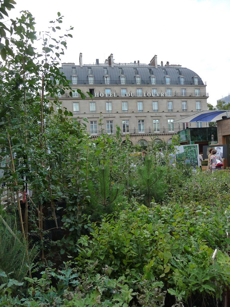 """Exposition """"Bois & Forêt le choix nature !"""" place du Palais Royal, Paris 1er (75)"""