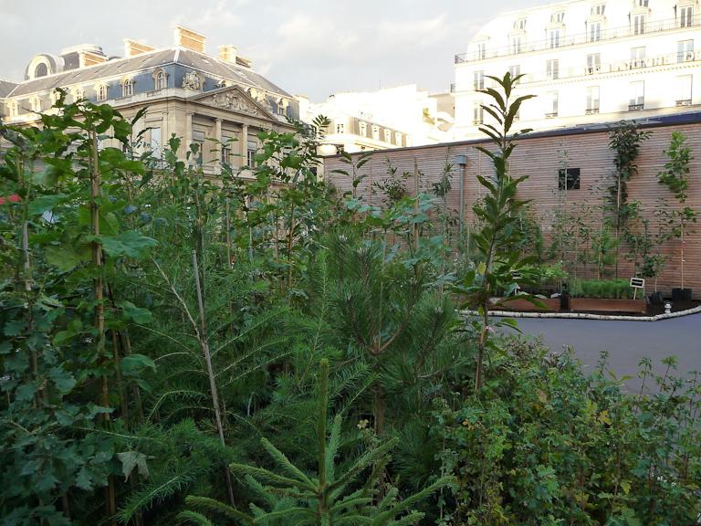 """Maison en bois """"Habitat Zéro Carbone"""", exposition """"Bois & Forêt le choix nature !"""", place du Palais Royal, Paris 1er (75)"""