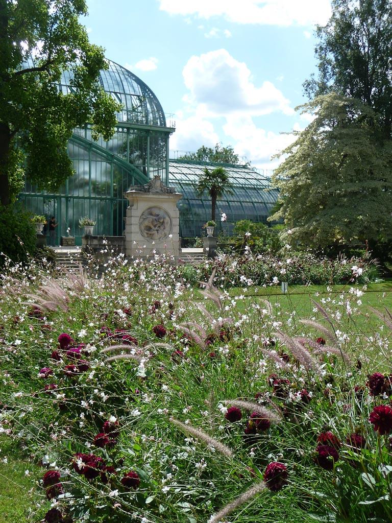 Palmarium dans le Jardin des Serres d'Auteuil, Paris 16e (75)