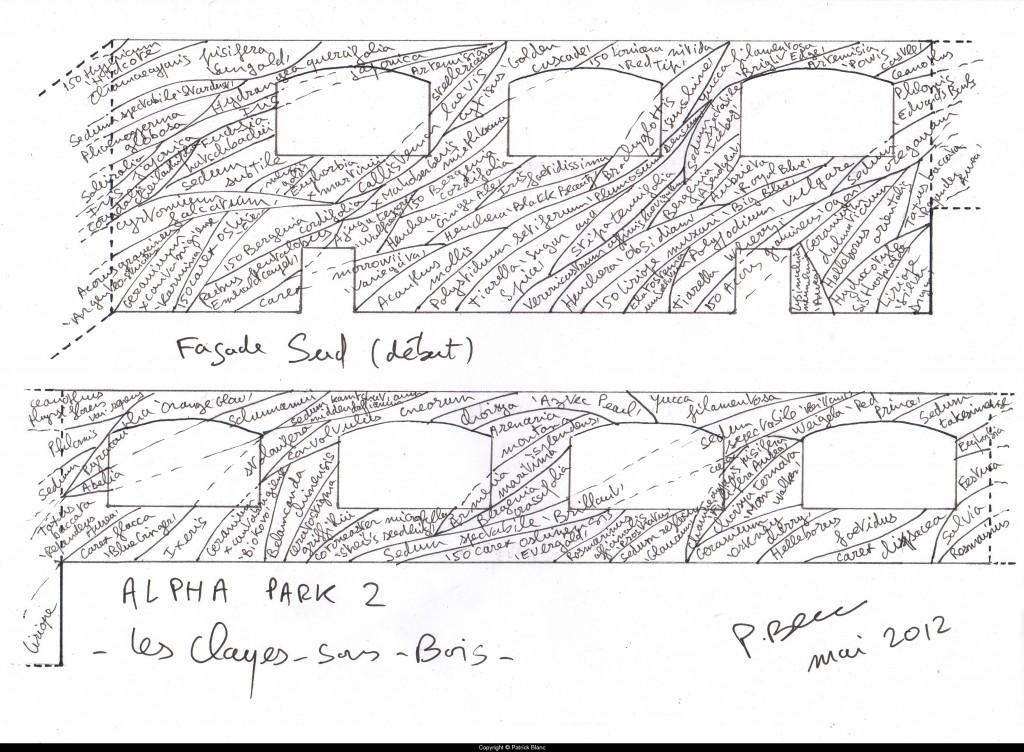 Dessin de Patrick Blanc pour son plus grand Mur végétal sur le centre commercial Alpha Park II, Clayes-sous-Bois (78)