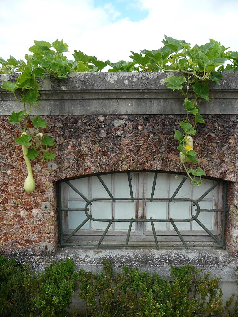 """Terrasse côté Seine avec le potager en carrés et ses courges, exposition """"Savez-vous planter les choux ?"""", parc de Bagatelle"""
