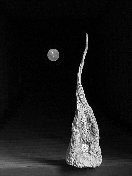 La betterave au clair de lune / Olivier Verley