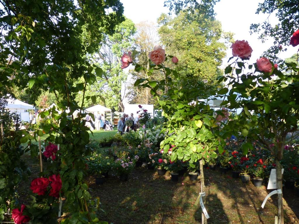 Salon Nature et jardin de Rueil-Malmaison (92)