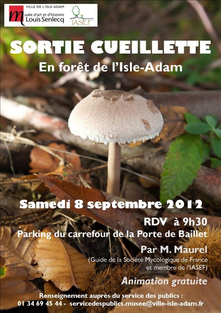 Sortie cueillette en forêt de l'Isle-Adam, 8 septembre 2012