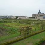 Potager du Roi en automne, Versailles (78)