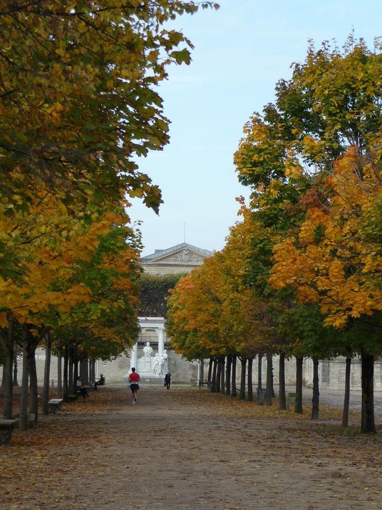 Couleurs d'automne dans le Jardin des Tuileries, Paris 1er (75)