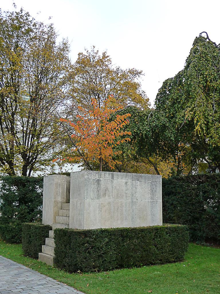 Prunus surélevé dans le Parc André Citroën en automne, Paris 15e (75)