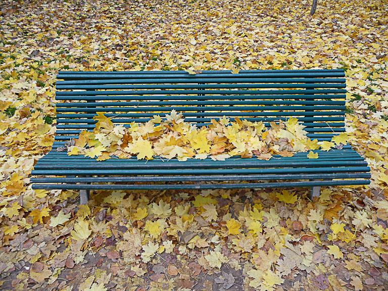 Accumulation de feuilles mortes sur un banc et sur le sol dans le Parc Monceau en automne, Paris 8e (75)