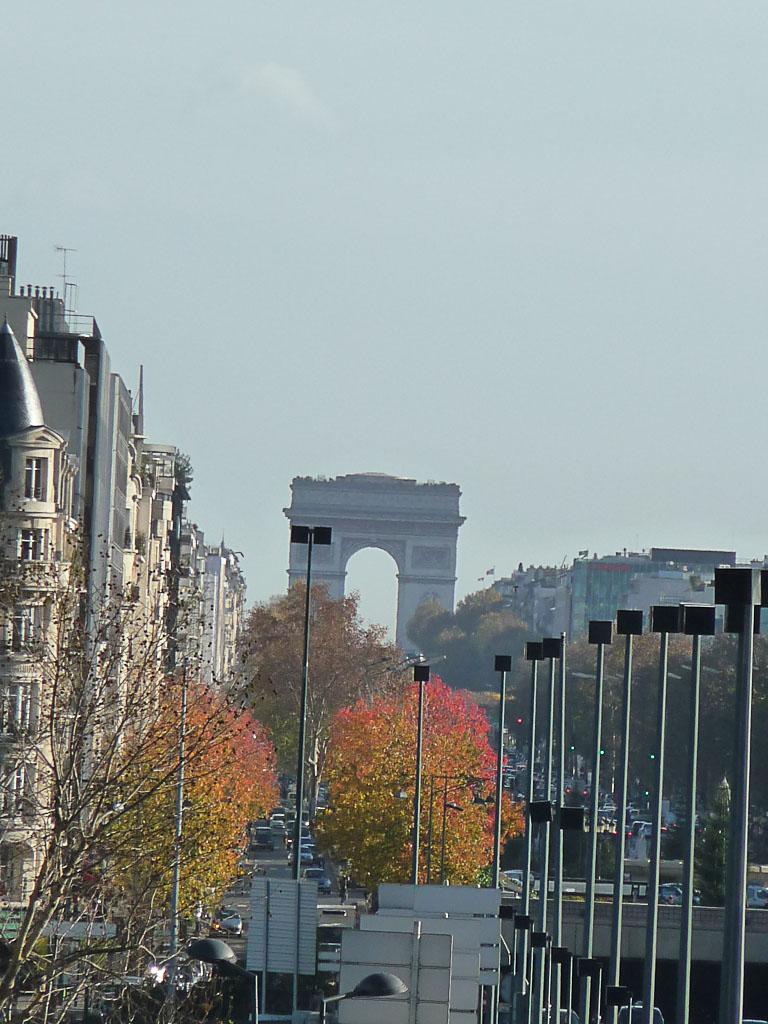 Arbres au feuillage d'automne coloré dans l'avenue Charles de Gaulle, Neuilly (92)