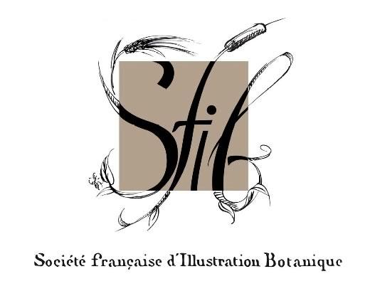 Logo de la SFIB