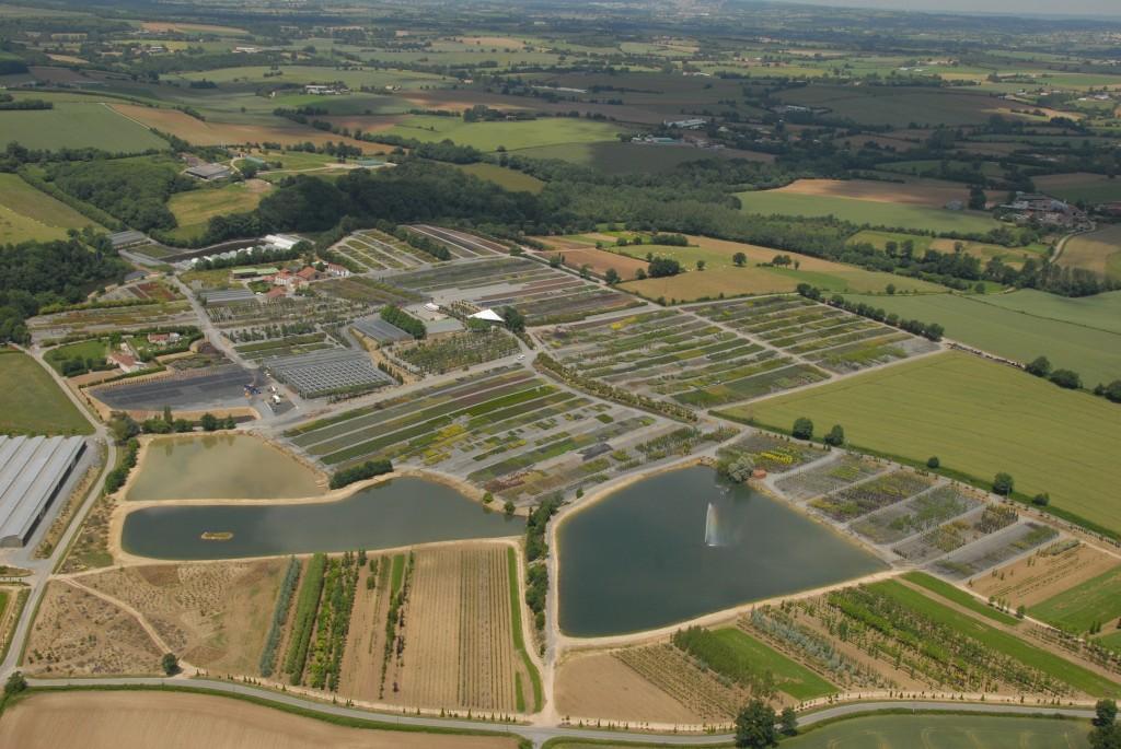 Vue de la pépinière vendéenne et de ses 2 millions de plantes disponibles en ligne