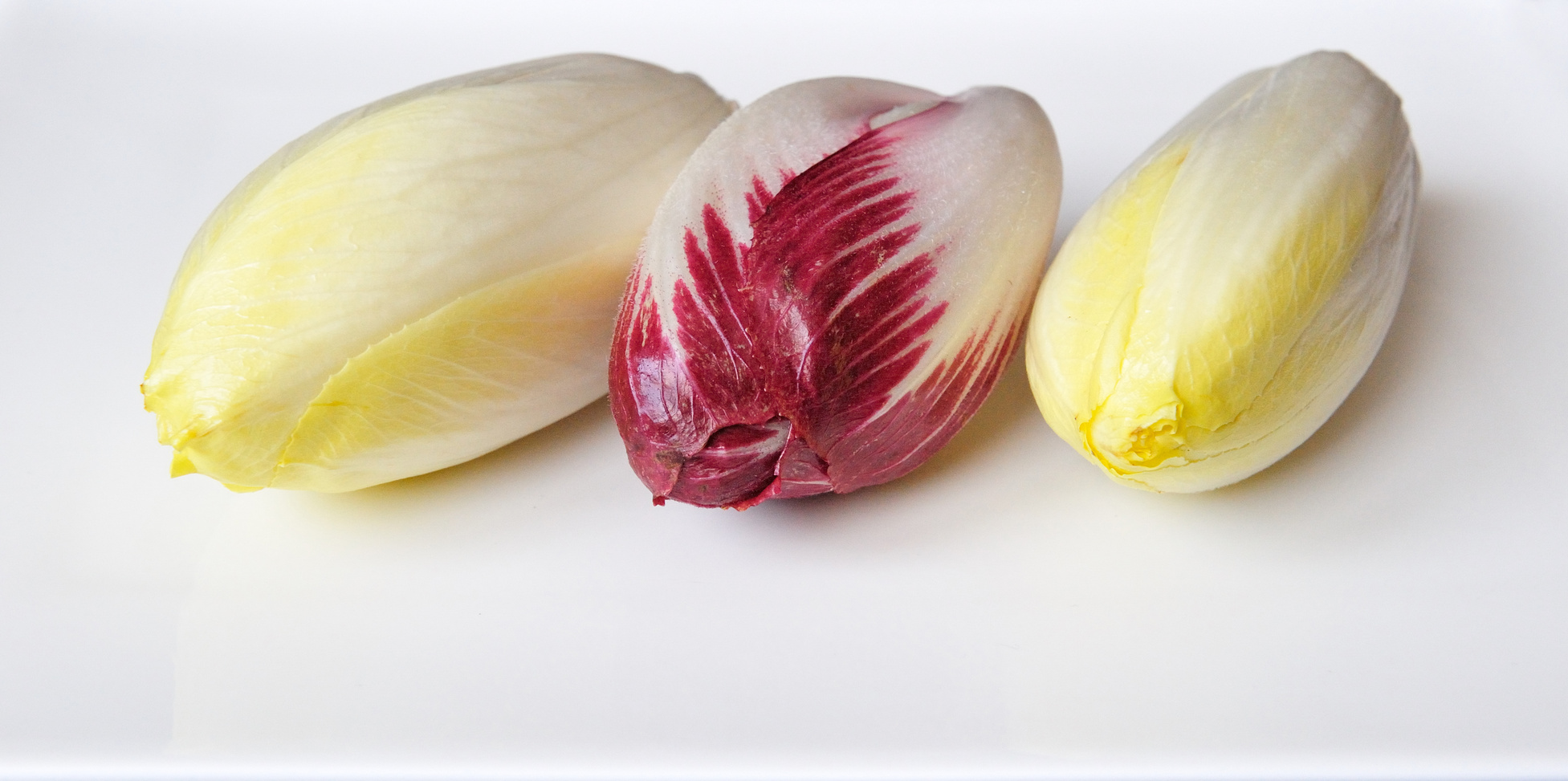 Endives, photo Yves Roland - Fotolia.com