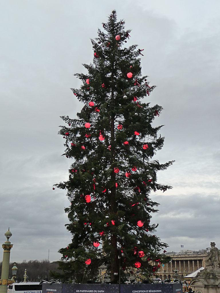 Sapin de Noël, place de la Concorde, Paris 1er (75)